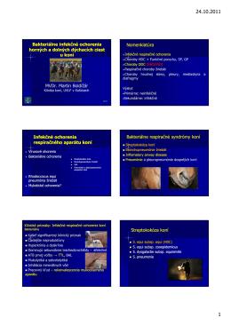 Bakteriálne_infekčné_ochorenia_horných_a_dolných_dýchacích