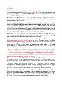 BÃ VANIE.pdf - Marginal.sk