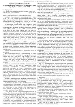 Výročná správa farára za r.2011