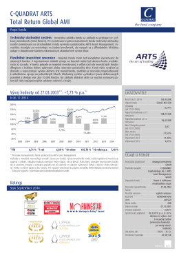 Factsheet Global AMI