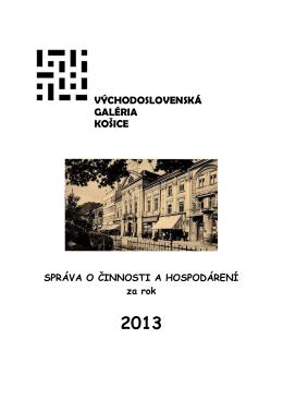 VSG – Správa o činnosti a hospodárení za rok 2013