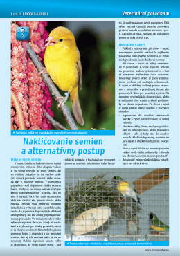 Nakličovanie semien a alternativny postup.pdf