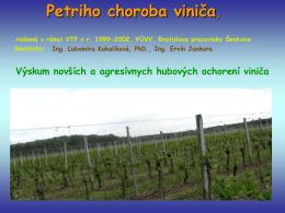Petriho choroba viniča