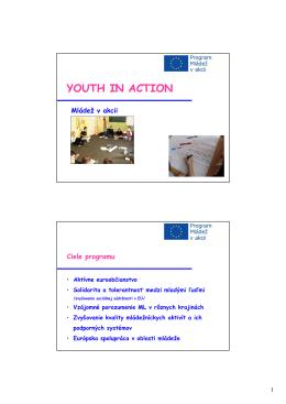Program Mládež v akcii