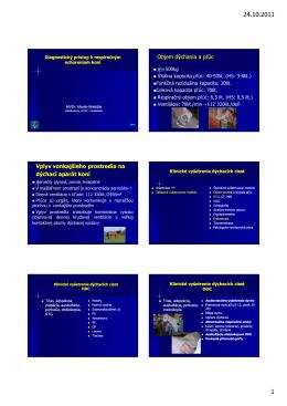 Diagnostický_prístup_k_respiračným_ochoreniam_koní