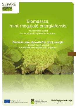 Biomasa, ako obnoviteľný zdroj energie