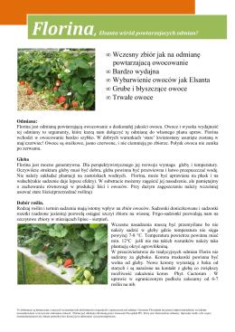 • Wczesny zbiór jak na odmianę powtarzajacą owocowanie • Bardzo