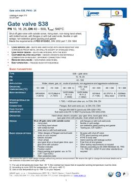 Gate valve S38