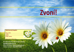 ZVONÍ leto 2013 - ZŠ Nábrežná 95 | Nové Zámky