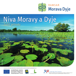 Niva Moravy a Dyje - March-Thaya-Auen