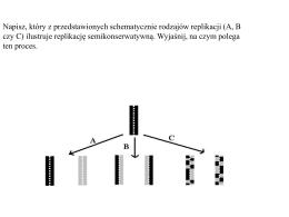 Mikrosatelitarne sekwencje DNA - analizy dna drzew leśnych na