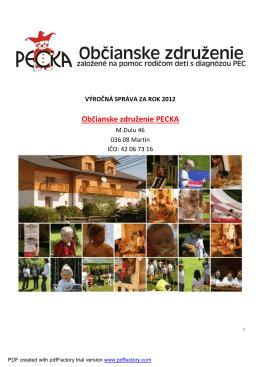 Výročná správa za rok 2012