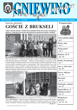 plik w formacie pdf