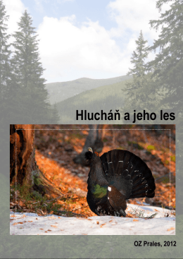 Hlucháň a jeho les - tetrao carpathians