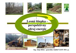 Lesná štiepka - perspektívny zdroj energie