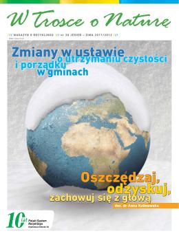 Pełny tekst / Full text