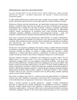 Znakowanie CE - Kruszywa Drogowe