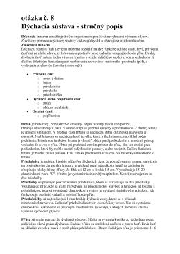 08 Dýchacia sústava, stručný popis