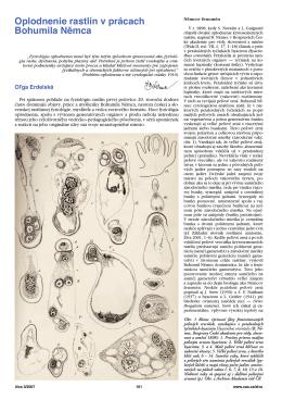 strana 161-168 - Živa