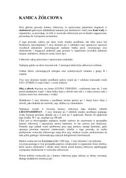 PDF-Acrobat Reader