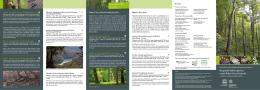 Karpatské bukové pralesy a staré bukové lesy Nemecka