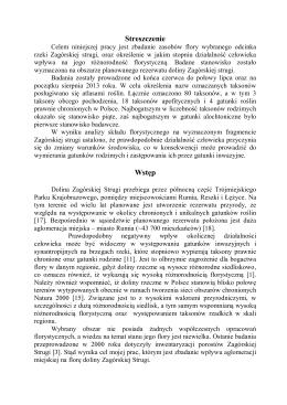 Wyróżniona praca w formacie pdf