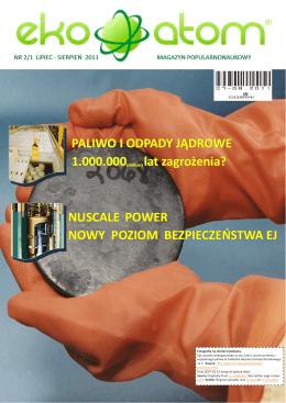 RAPORT Z DZIAŁAŃ Fundacji LOTTO Milion Marzeń w 2013 r.