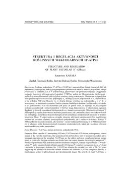 Raport końcowy – 2013: wersja skrócona