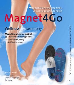 Magnet - Energetix
