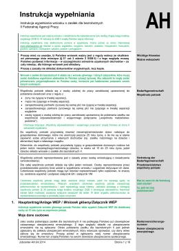 Instrukcja wypełniania - Bundesagentur für Arbeit