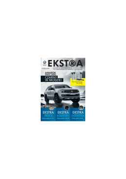 PDF; 2,8MB - Volkswagen Samochody Użytkowe