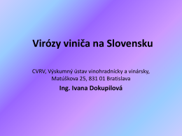 Dokupilová