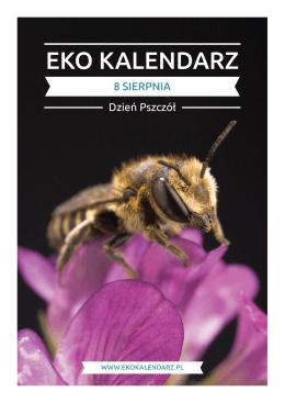 Pakiet edukacyjny - Dzień Pszczół
