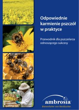 Odpowiednie karmienie pszczół w praktyce