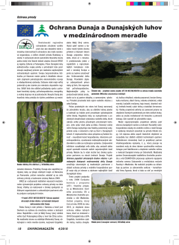 Ochrana Dunaja a Dunajských luhov v medzinárodnom meradle