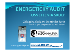 energetický audit (pdf)
