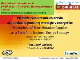 Plantáže rýchlorastúcich drevín ako základ regionálnej stratégie v