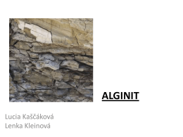 ALGINIT - Webnode