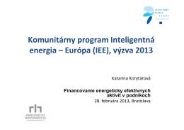 Prezentácia Korytarova IEE BIC 28.2.2013