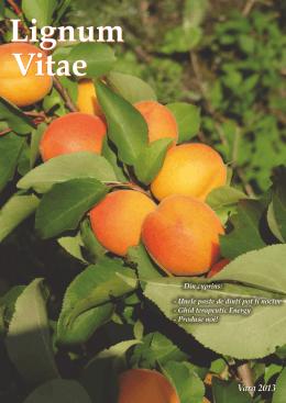 Vara 2013 (pdf)