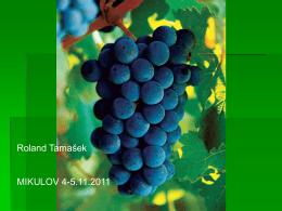 Roland Tamašek MIKULOV 4-5.11.2011
