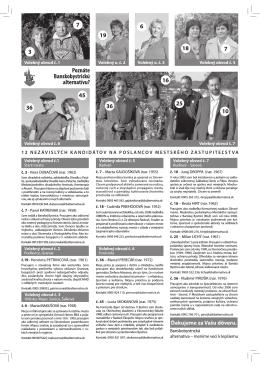 Voľby 2010 - Banskobystrická alternatíva