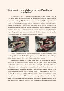 Zubný kameň – čo to je? ako a prečo vzniká