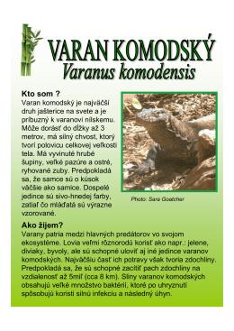 Varan komodský (PDF 284 kB)