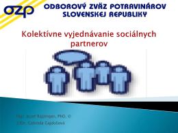 Kolektívne vyjednávanie sociálnych partnerov *.pdf