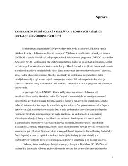 Kopčanová - Správa do PAPD 2013