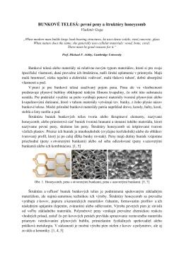 Bunkove telesa - penove materialy.pdf