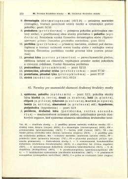 8. dermatogén (dermatogenum) (45/1D) — primârny meristém