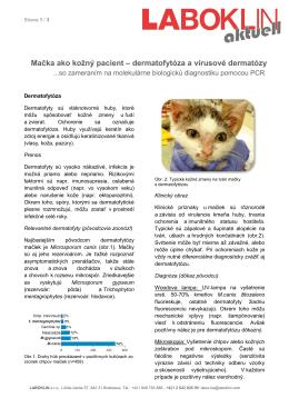 Mačka ako kožný pacient – dermatofytóza a vírusové