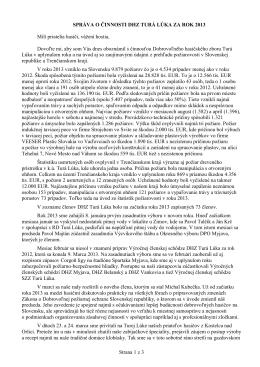 Správa o činnosti 2013